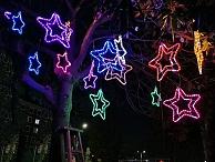 河南树木亮化-凸显灯光造型艺术