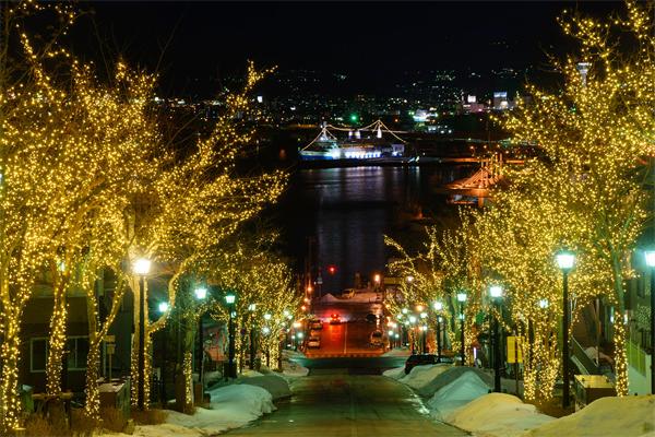 公共景观照明公司