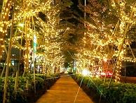 园林景观亮化设计-利用光与影来烘托自然