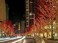 树木亮化工程-突显灯光层次感