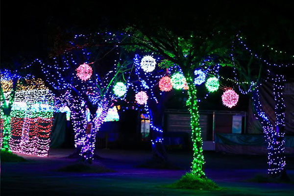 景观树照明亮化-是户外亮化设计的关键构成