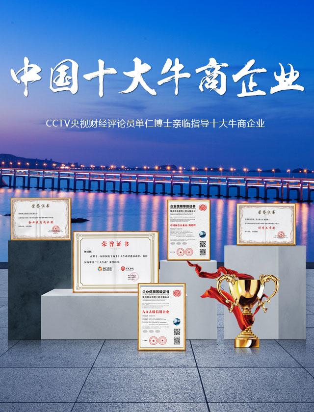 中国十大牛商企业