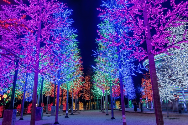 植物景观照明