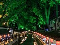 树木亮化公司-成为园林景观亮化的一部分