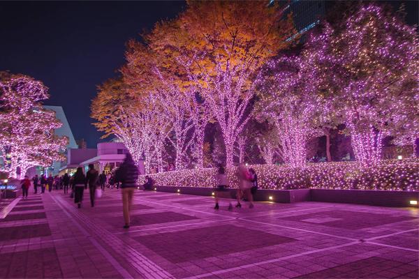 园林灯光亮化公司