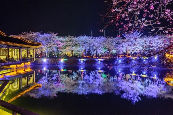 夜景照明工程公司